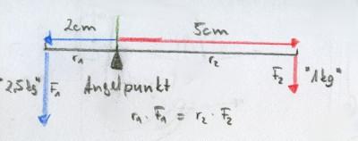 Ausgehebelt – Die Physik in der Kandare