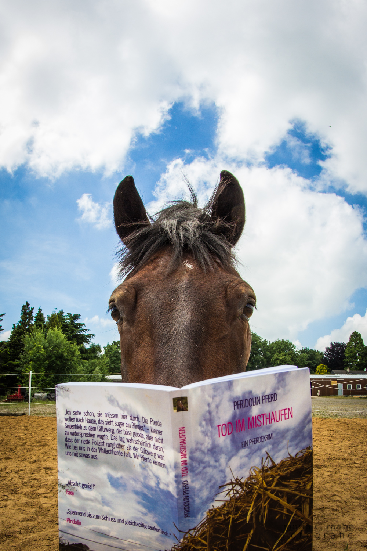 Gelesen: Tod im Misthaufen von Pfridolin Pferd