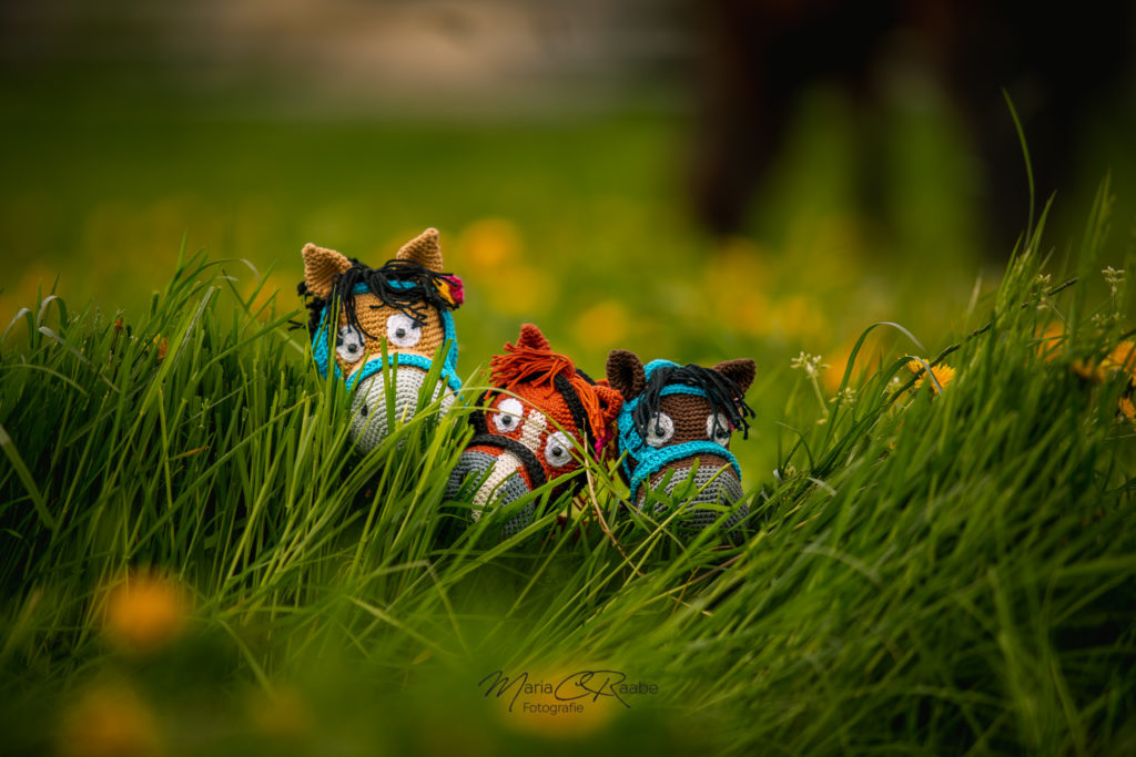 Die Amigurumi-Pferde-Herde - Lobrono, Kleiner Kobold und Nevado